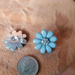 Cute Blue jeweled daisies